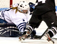 012514 Bowdoin at Middlebury WIH